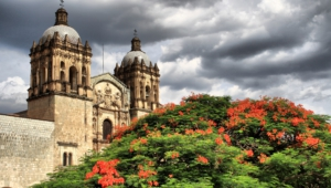 Pictures Of Oaxaca