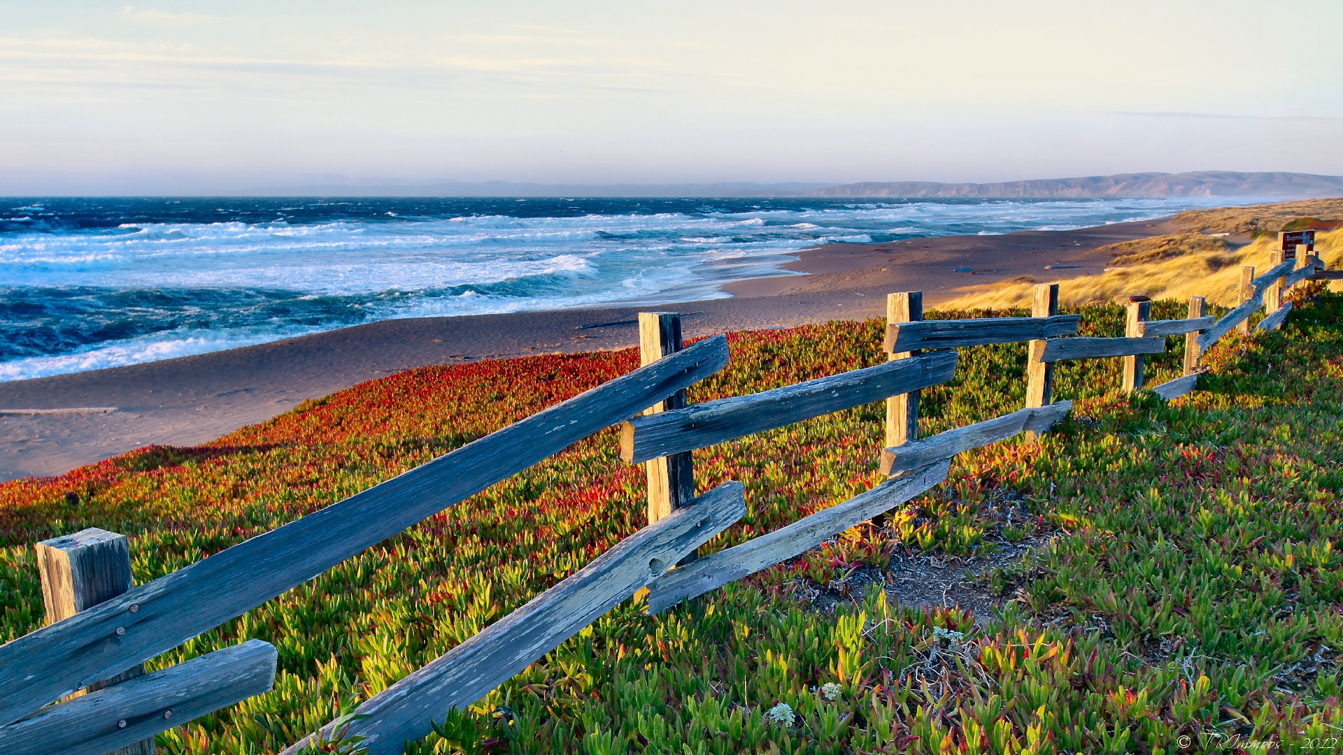 Pictures Of Point Reyes National