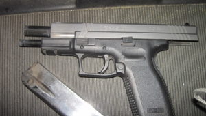 Pictures Of Springfield Xd
