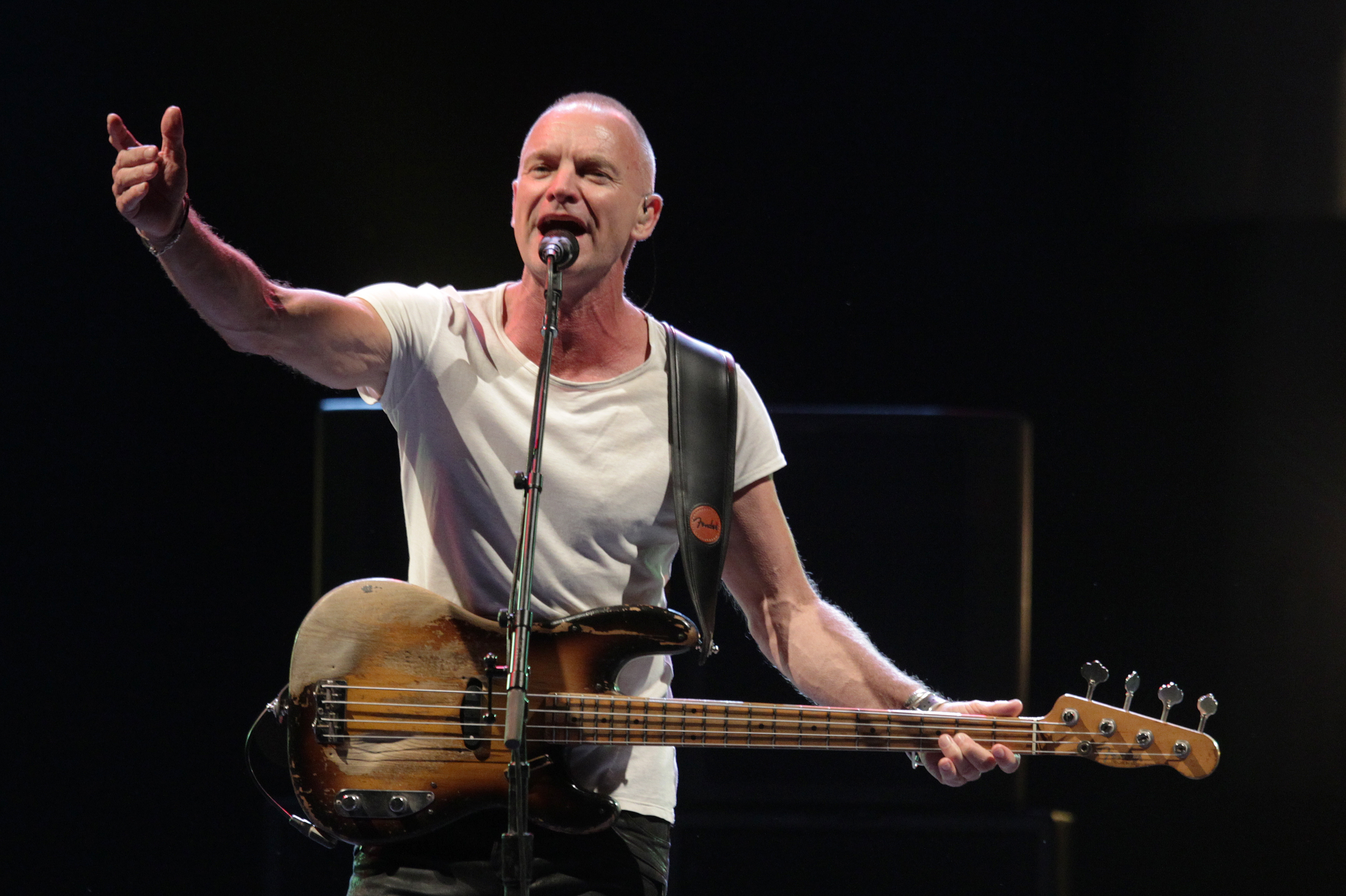 Pictures Of Sting