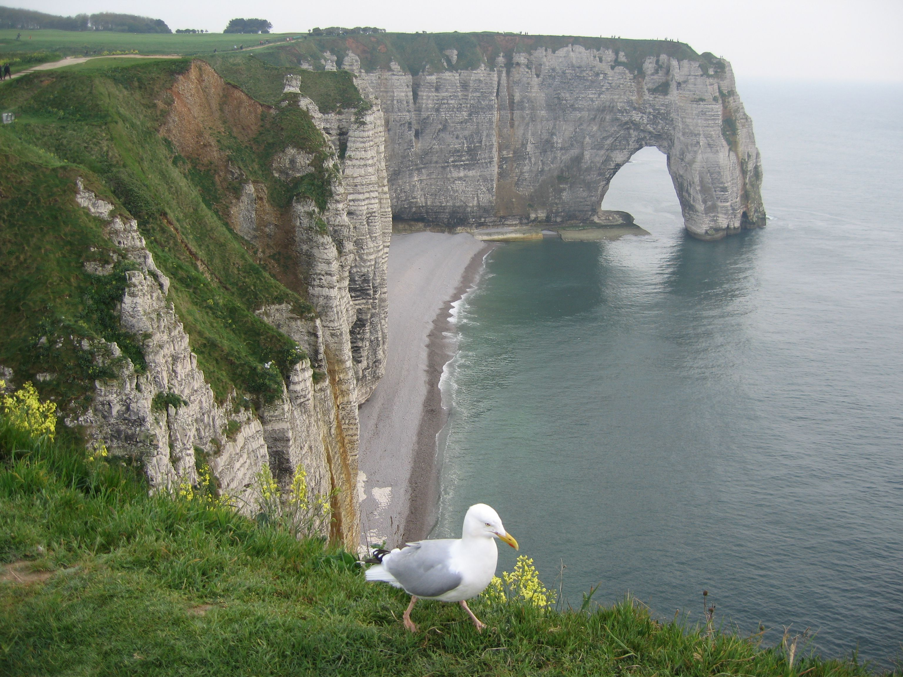 Pictures Of The Cliffs Of Etretat