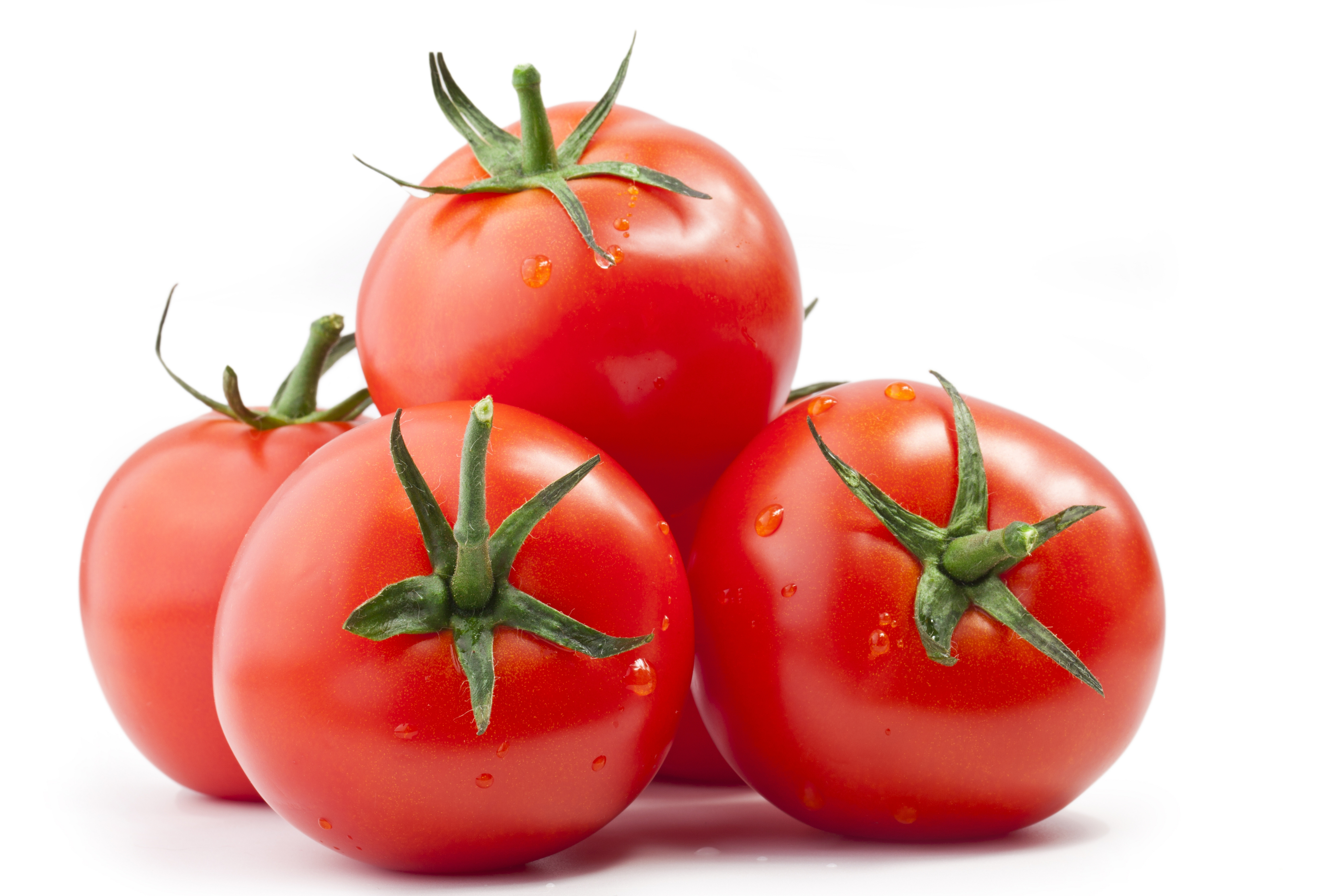Pictures Of Tomato