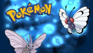 Pictures Of Venomoth