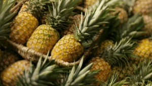Pineapple Hd Wallpaper