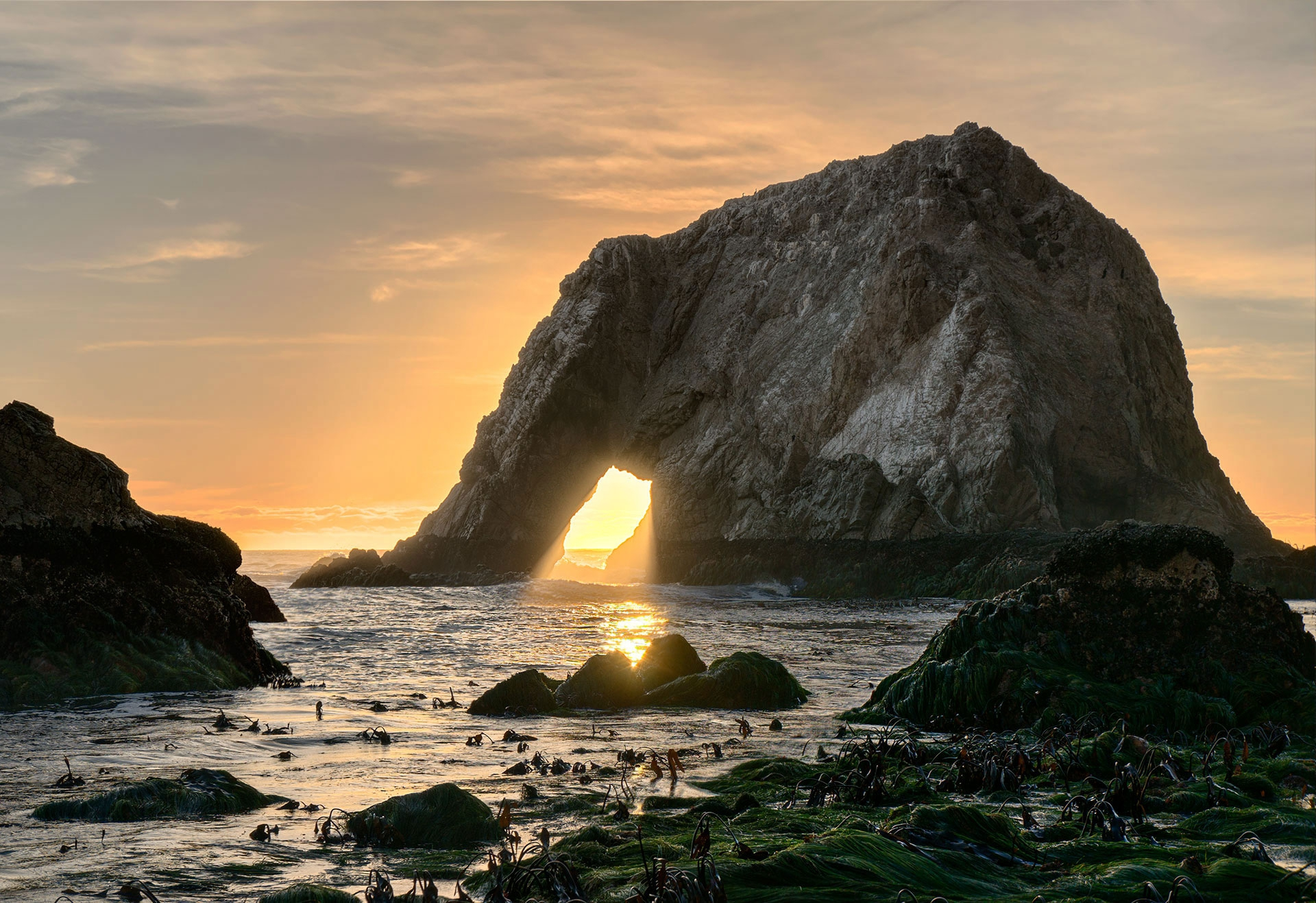 Point Reyes National Background