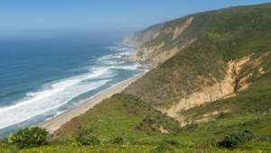 Point Reyes National Images