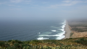 Point Reyes National Wallpapers