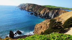 Point Reyes National For Desktop