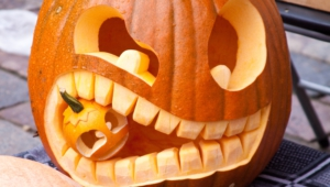 Pumpkin Hd