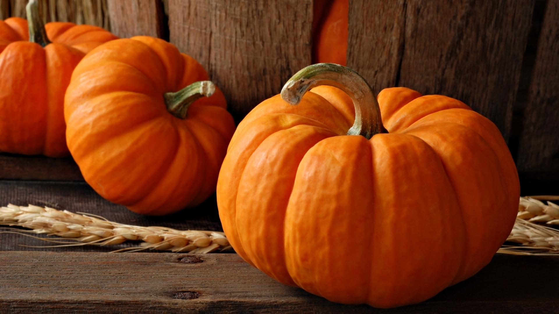 Pumpkin Widescreen