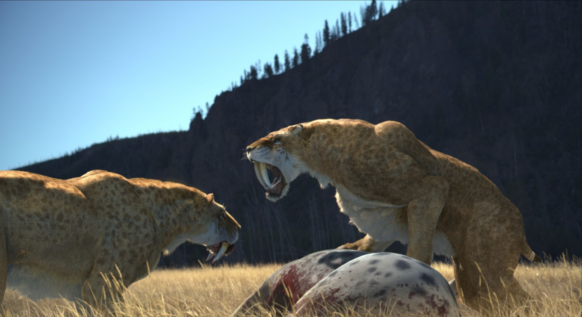 Sabre Toothed Tiger Wallpapers