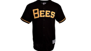 Salt Lake Bees Images