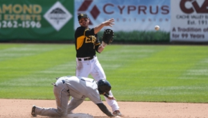 Salt Lake Bees Pictures