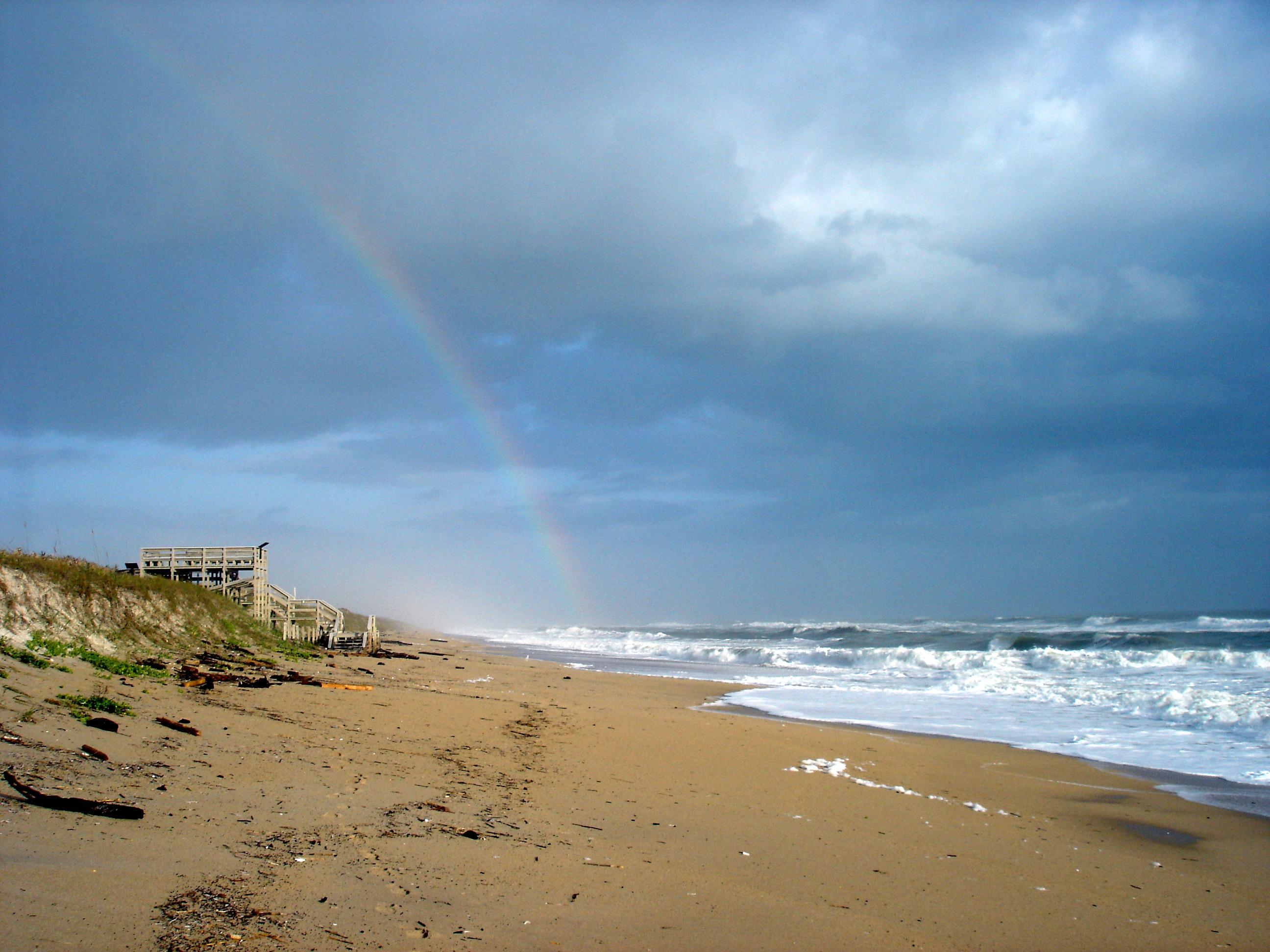 Seashore Pictures
