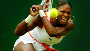 Serena Williams Free Hd Wallpapers