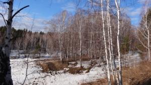 Siberian Widescreen