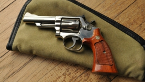 Smith Wesson Model Pictures