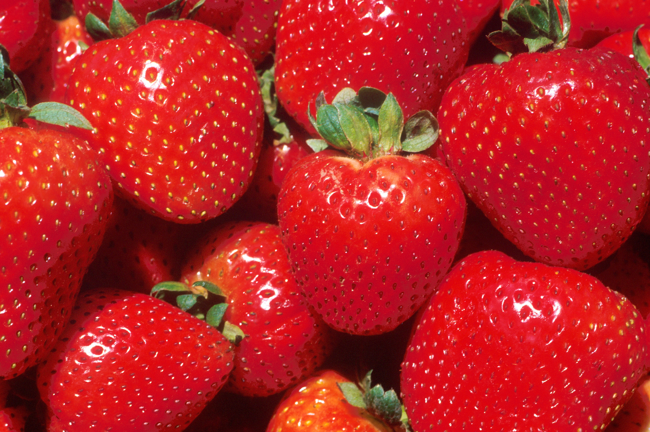 Strawberry Desktop