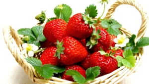 Strawberry Download Free Backgrounds Hd