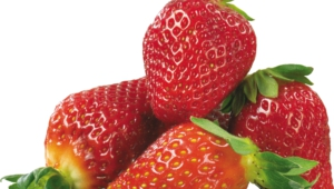 Strawberry Free Download