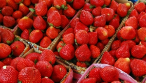 Strawberry Hd Background