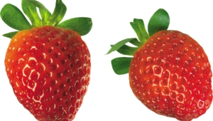 Strawberry High Definition