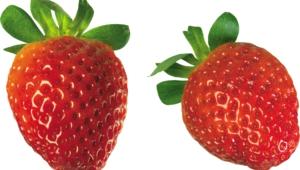 Strawberry High Definition