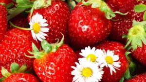 Strawberry Pics