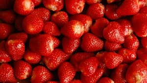 Strawberry Pictures