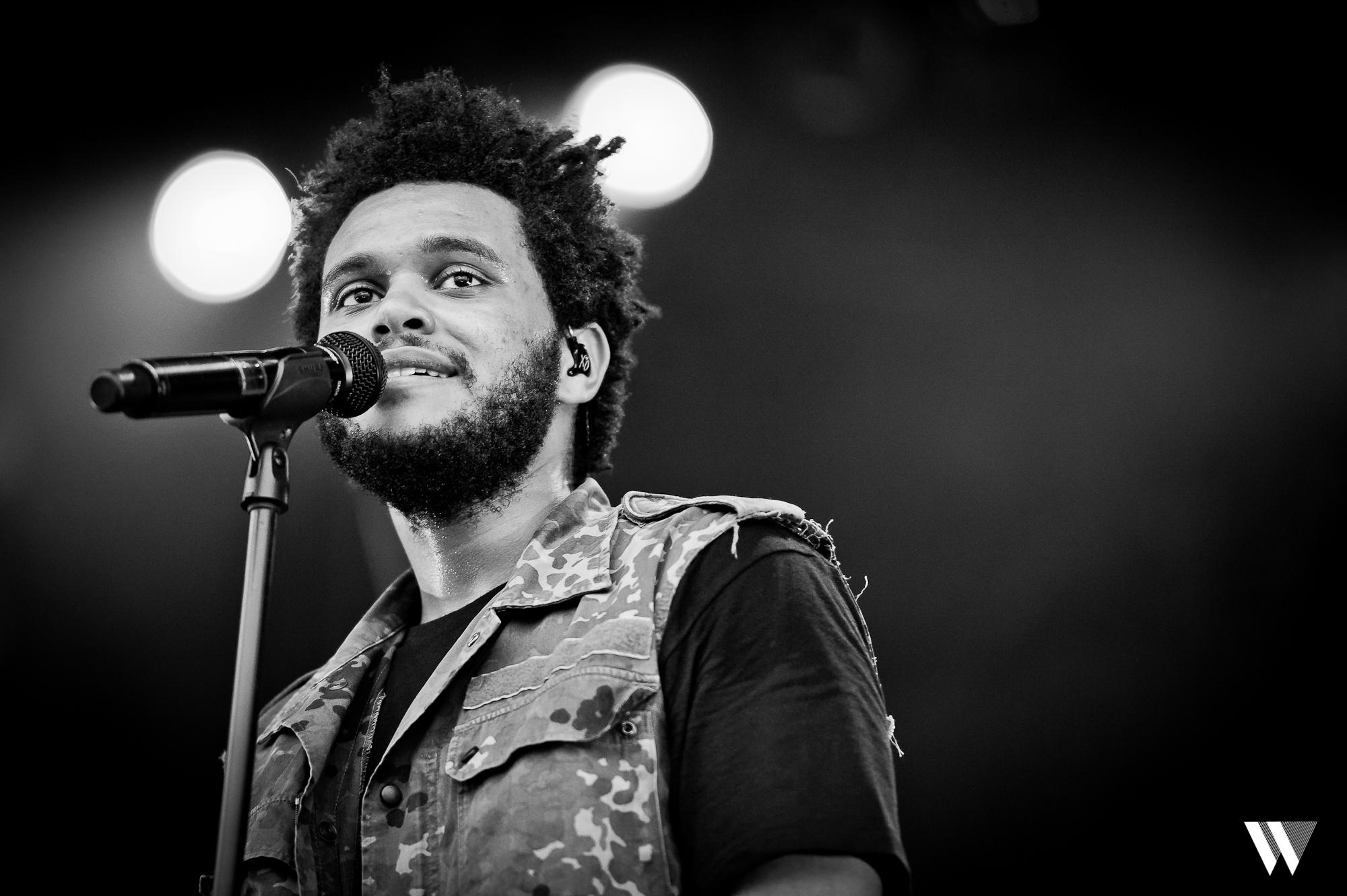 The Weeknd Hd Desktop