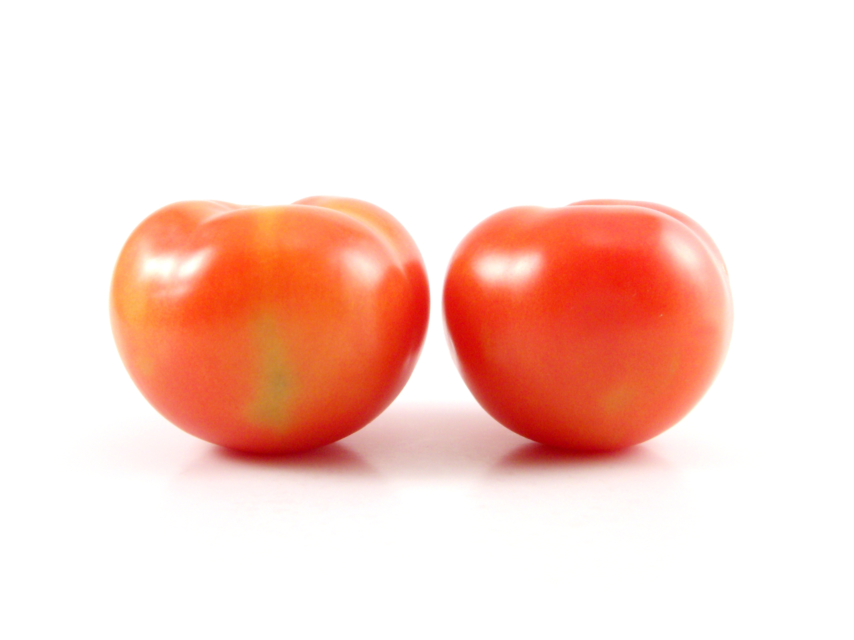 Tomato Download