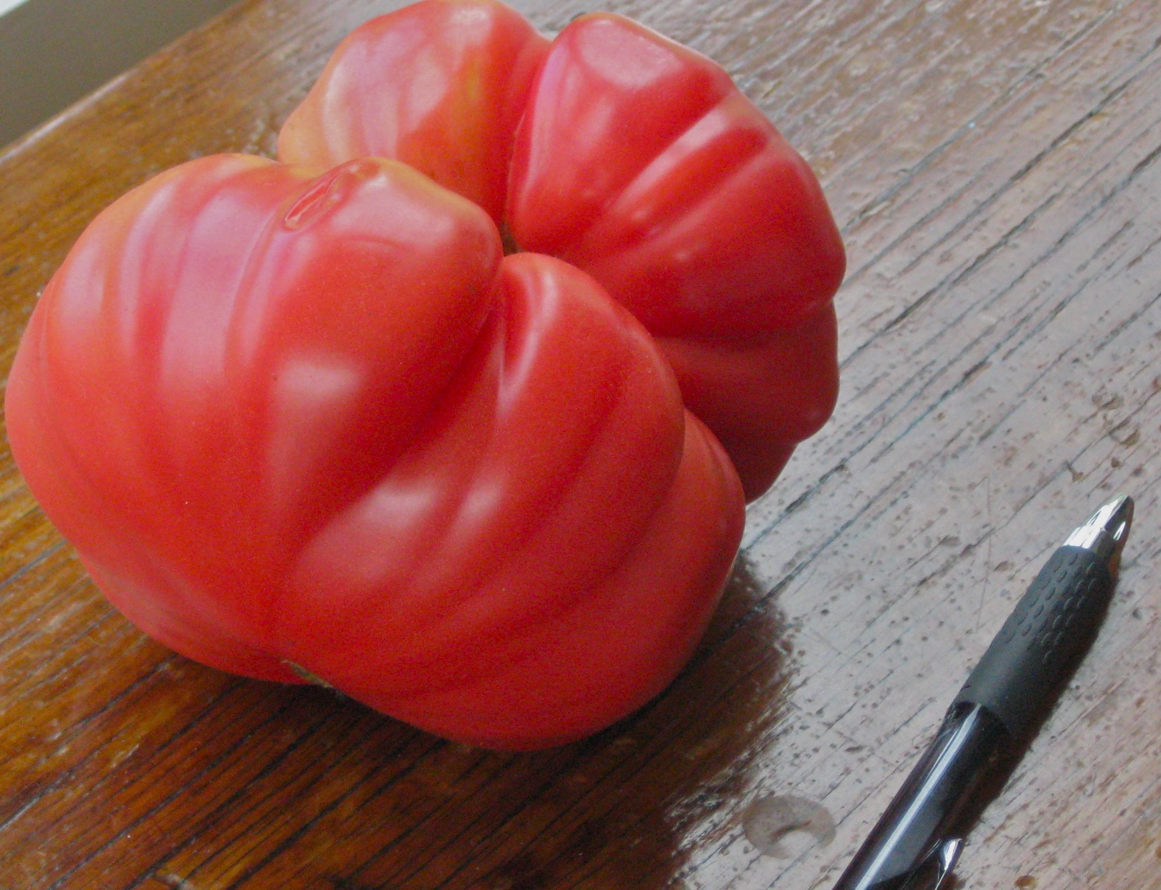 Tomato Hd Background
