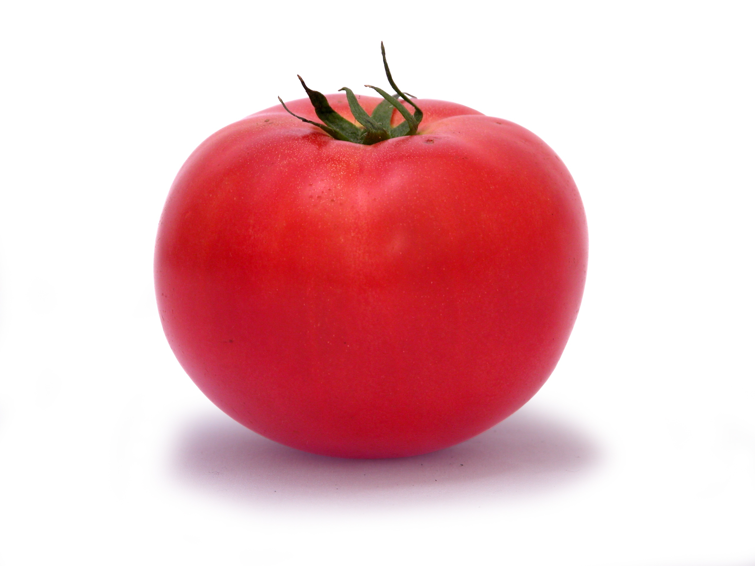 Tomato Wallpapers