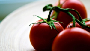 Tomato Free Images