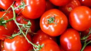 Tomato Full Hd