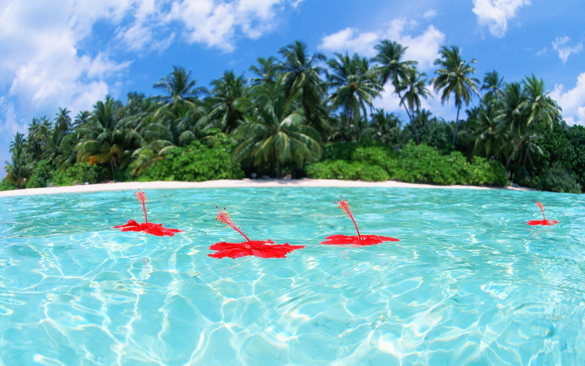Turquoise Sea High Definition Wallpapers
