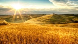 Tuscany High Quality Wallpapers
