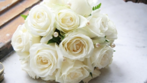 White Rose Full Hd