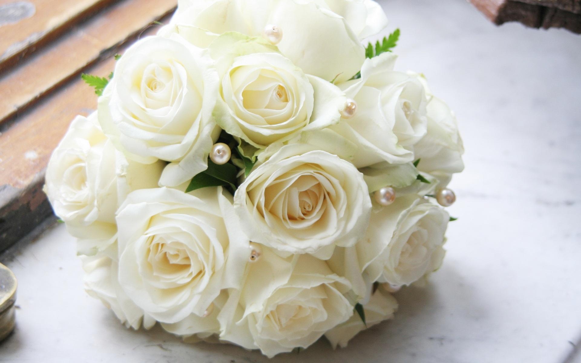 White Rose Full Hd