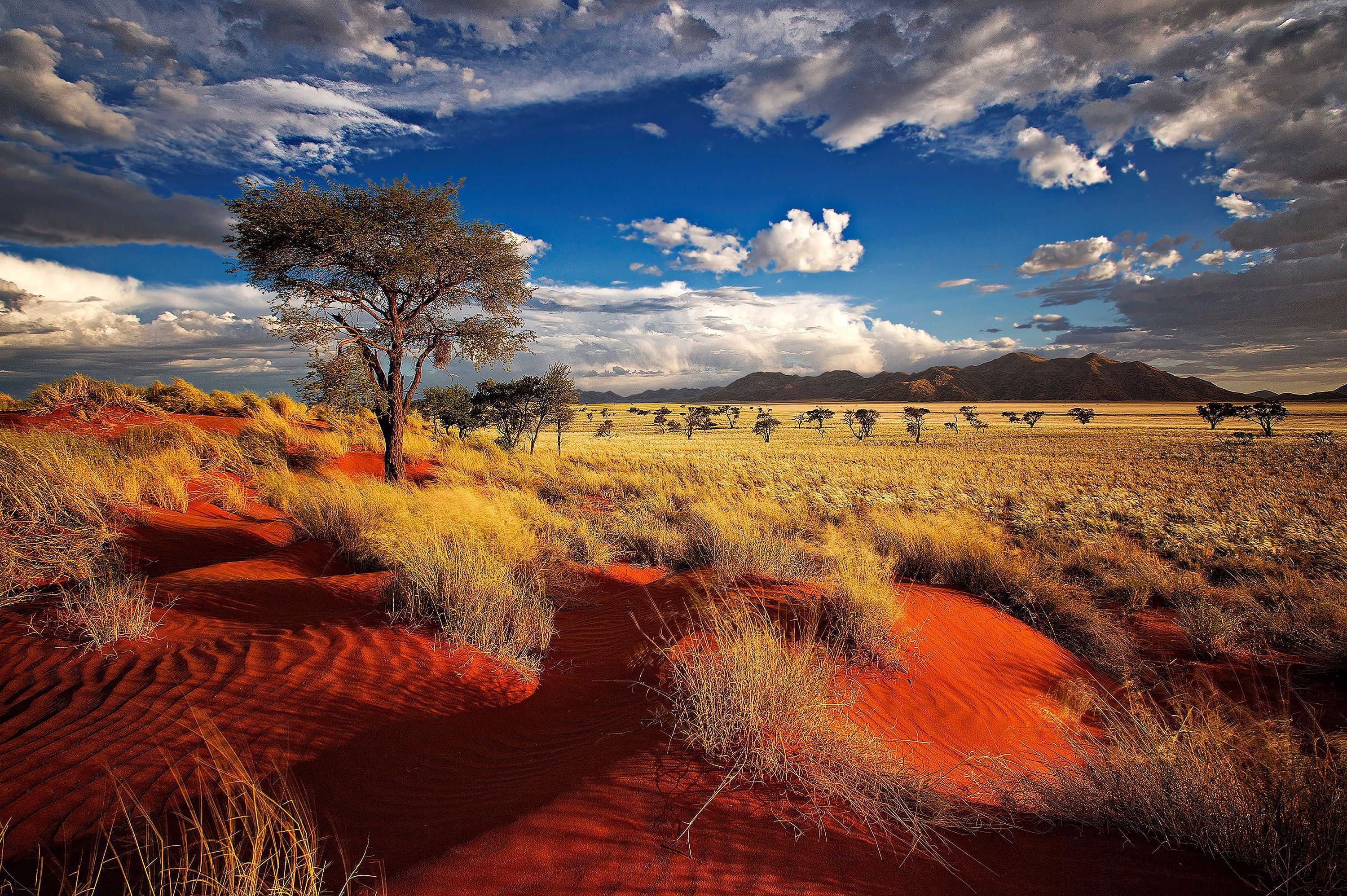 Wind Cathedral Namibia High Definition Wallpapers