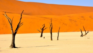 Wind Cathedral Namibia Images
