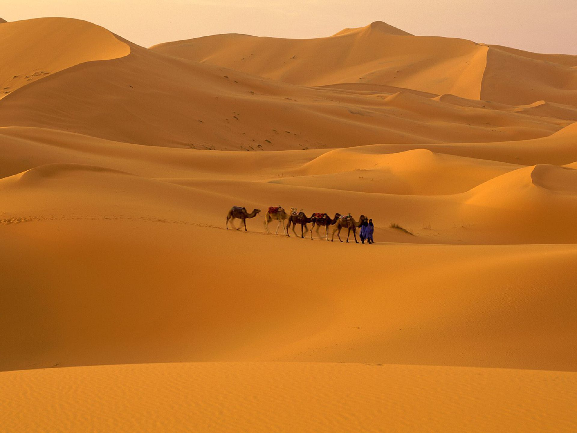 Wind Cathedral Namibia Wallpapers