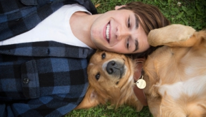 A Dog's Purpose High Quality Wallpapers