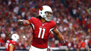 Larry Fitzgerald Photos