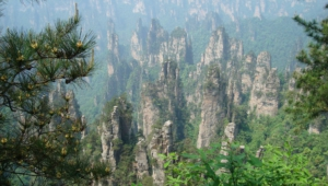 Tianzi Mountain Wallpaper