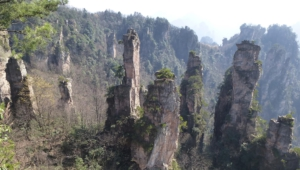 Tianzi Mountain Wallpapers