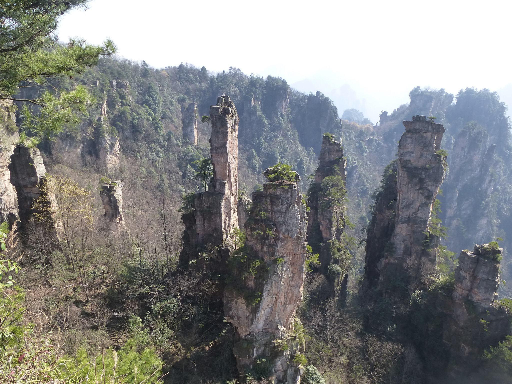 Tianzi Mountain Wallpapers