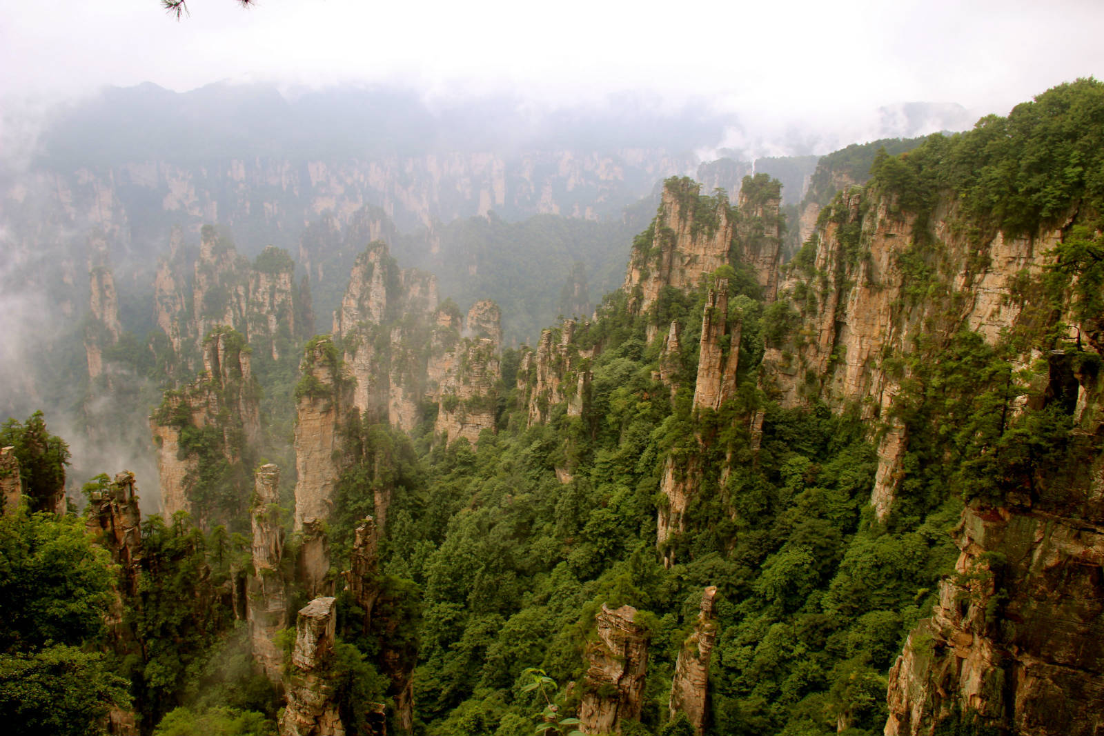 Tianzi Mountain For Desktop