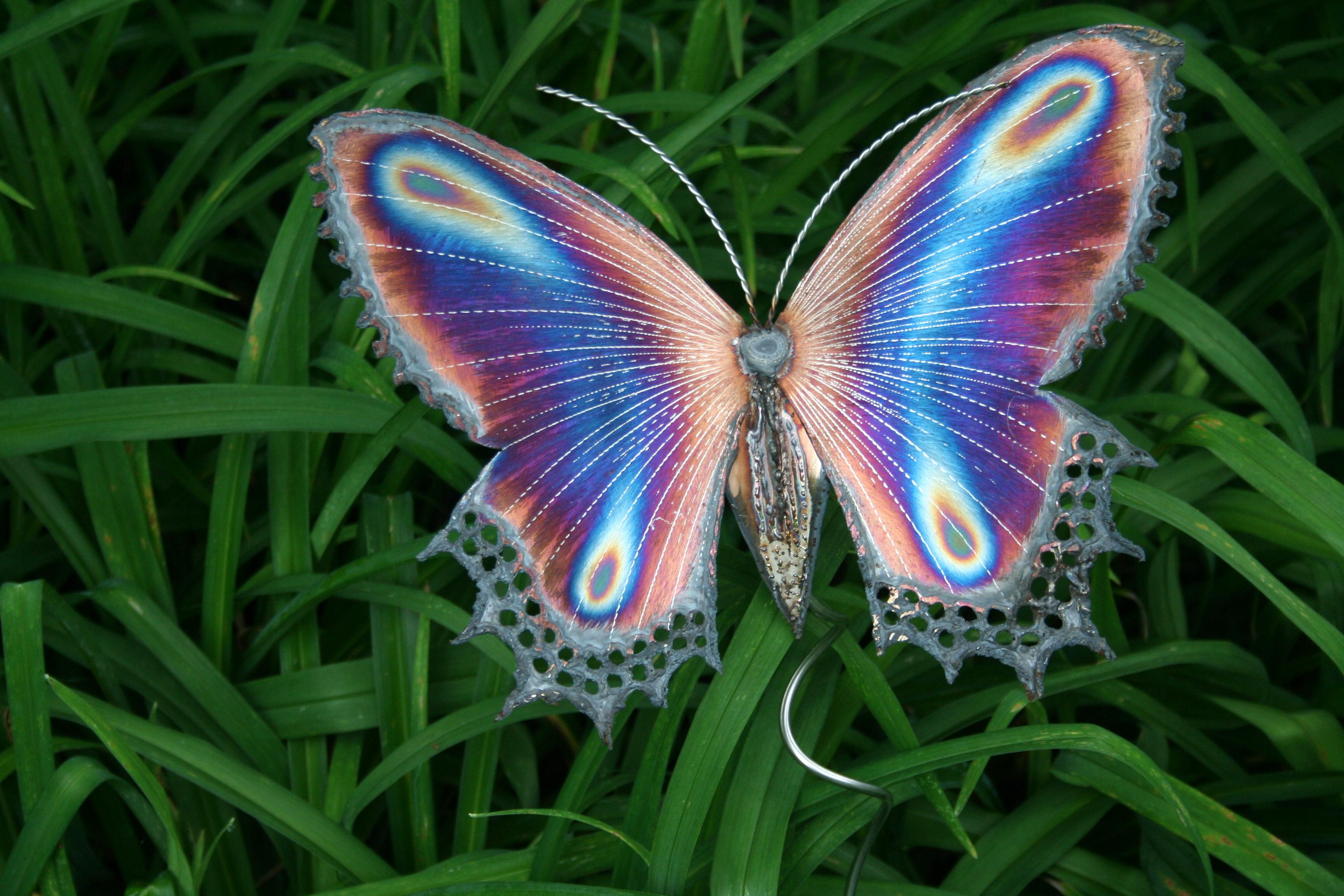 Butterfly HD Desktop