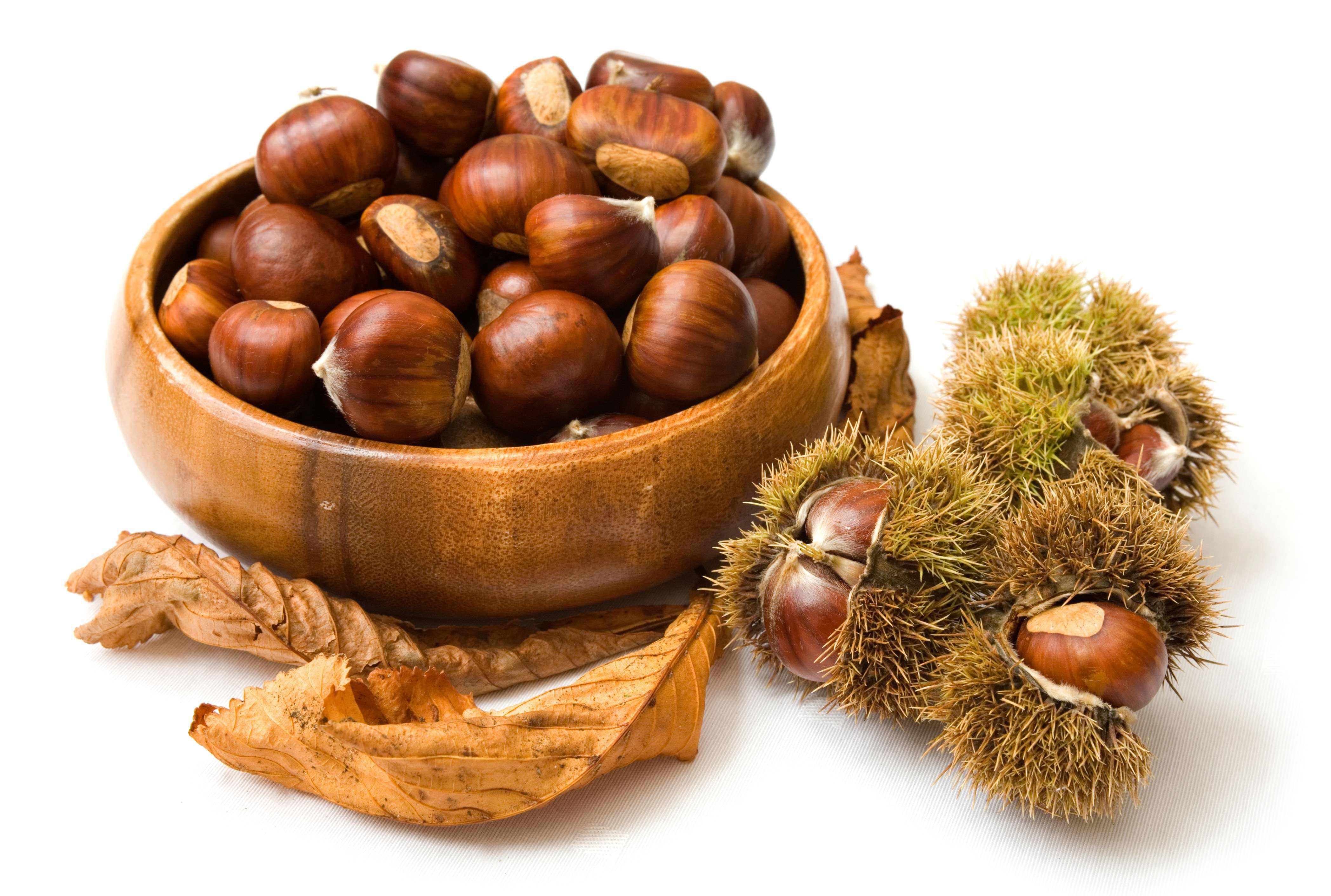Chestnut For Desktop